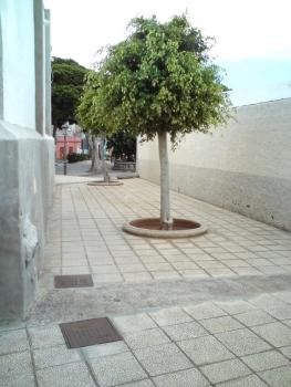 20100723_buenavista_dn_072