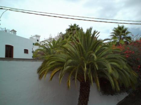 guia_de_isora24