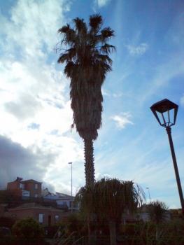 la_luz028